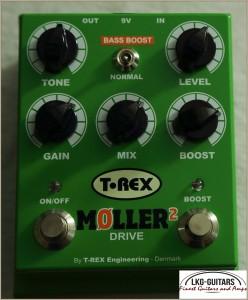 T-Rex 001 010