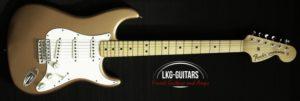 Fender MB Strat Greg Fessler 017
