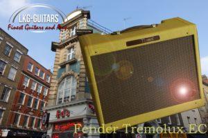 Fender EC Amp 100