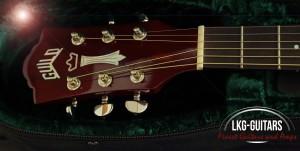 Cort Akustikgitarre008